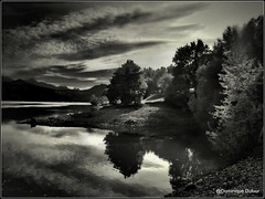 Lac de Monteynard-Avignonet (Dominique Dufour) Tags: lacdemonteynard lac noir et blanc