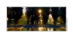 P2110248 (cowsandgirl71) Tags: panasonic fz200 france couleur reflet eau arbre automne ombre lumire lumix landscape soleil rayons jaune vert