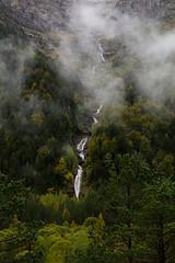Sobrarbe Otoo 9 Octubre 2016 (carlosjarnes) Tags: otoo cascadas pineta pirineos