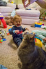 Cat Log- November 27, 2016 (zachary.locks) Tags: 297 allie attacking baby cat cy365 day happy jack kitten log looking playing smile smiling son string up zlocks