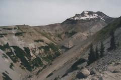 Zigzag Canyon 9, Paradise Park Trail 2016 (Sara J. Lynch) Tags: sara j lynch paradise park trail mount hood national forest oregon pct pacific crest northwest zigzag canyon nikon n50 35mm film mountain