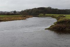 Confluence of the Rivers Ribble and Calder (Walruscharmer) Tags: riverconfluence river mittonwood lowerribblesdale lancashire riverscene england