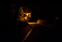 The Curve (modestmoze) Tags: night black sky darkness path curve turning leading lines 2016 walking october autumn 500px grass green trees branches leaves nature travel explore white brown yellow light lit dark shadows lightpole pole view park lithuania outside outdoors out
