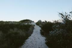 DSCF5597.jpg (eddy_) Tags: eddy milfort beach nsw jervis bay park national mar oceano blue ocean pacific