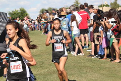 State XC 2016 1857 (Az Skies Photography) Tags: aia state cross country meet aiastatecrosscountrymeet statemeet crosscountry crosscountrymeet november 5 2016 november52016 1152016 11516 canon eos rebel t2i canoneosrebelt2i eosrebelt2i run runner runners running action sport sports high school xc highschool highschoolxc highschoolcrosscountry championship championshiprace statechampionshiprace statexcchampionshiprace races racers racing div division iv girls divsioniv divgirls divisionivgirls divgirlsrace divisionivgirlsrace
