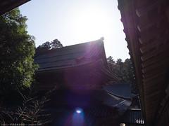 E-M1-160086 (Torunara_Photo) Tags: autumn outdoor temple budda