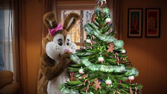 Happy Holiday Season (tsundet) Tags: rabbit mascot maskot mascotte teddybear bearcostume costume rabbitcostume christmas christmastree julestemning juletre kanin bamse bjørn teddybjørn bear