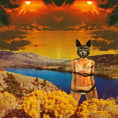 Two suns (Mariano Peccinetti Collage Art) Tags: cutandpaste globular collage surreal collageartist peccinetti marianopeccinetti dream meditation retro arte psych art psychedelic flowers vintage vintageart trippy 70s 60s lsd dmt surrealist surrealism space fullmoon moon cosmic camp saturn rainbow yoga desert lovers world love stars sun planets planet
