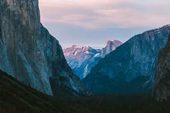 Yosemite Valley Zoom (mattbigwoods) Tags: perspective outdoors forest nature elcapitan halfdone pink sunset valley nationalpark yosemite