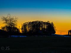 Sunset on a cold winterday (jonasschmidt1909) Tags: sauerland sunset sheeps nature colours frozen day