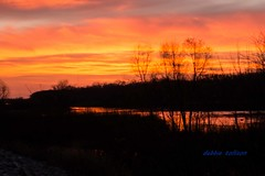 2016.11.18 Sunrise on the River (4) (dtolly1996) Tags: river sunrise sunset reflextion wisconsin portage orange