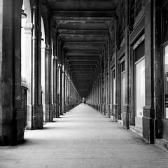 le grand palais (leofg37) Tags: noir et blanc black white colonne alle perspective grand palais rolleiflex paris 6x6 argentique