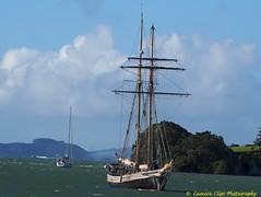 Tall Ship - R.Tucker Thompson, Opua (Julies Camera) Tags: tallshiprtuckerthompson tallship rtuckerthompson sailingship sailing sails masts