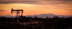 Sunset in the austrian oil field (Christian He) Tags: sonnenuntergang outdoor schneeberg natur lpumpe l feld sterreich gnserndrof auersthal bockflies omv wien kraftwerk himmel canon 700d 24105l industrie energie sterreichische minerallverwaltung