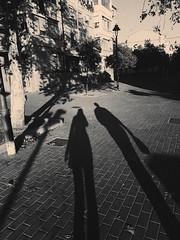 Shady. (lucsánchez) Tags: blackandwhite bw shadow shadows trees retro melancholy couple