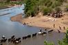 Madagascar - Mandria al guado (stefano barz) Tags: guado zebù bovini africa fiume pastore