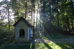 Hofkapelle (Aah-Yeah) Tags: hofkapelle marquartstein achental chiemgau bayern nebel morgennebel fog lichtblick sonnenschein sunbeams sunrays