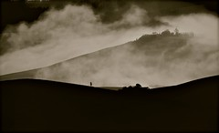 "... profili ... ("" paolo ammannati "") Tags: italy panorama mountain primavera fog alberi italia raw photographer shot top natura ombre io tuscany crete siena toscana 1001nights terra valdorcia nebbia montagna cretesenesi cipressi paoloammannati effettinaturali panoramafotográfico 1001nightsmagiccity"