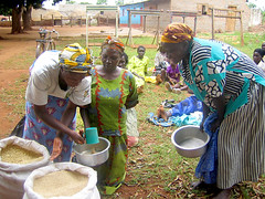 Beneficiaries of TAO's project pay-back seed after a successful season, Uganda, 2010 (Trust for Africa's Orphans) Tags: africa charity woman project women uganda tao funding charitable trustforafricasorphans supportingorphans improvingagriculture taorphans doit4orphans