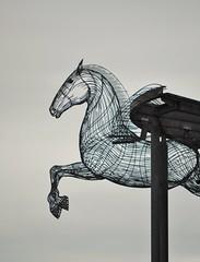 Pegasus (Michelle O'Connell Photography) Tags: sculpture horse monument scotland glasgow pegasus drumchapel andyscott wingedhorse drumchapelglasgow drumchapellifesofar lochgoinavenue michelleoconnellphotography ridgeofthehorse