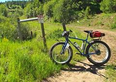 Waha Wandering with the Pugs (Doug Goodenough) Tags: summer mountains bike bicycle ride 14 spokes july idaho craig pedals pugsley surly waha 2014 drg53114p pugsleg drg53114pwahapugs2 drg531ppugsley