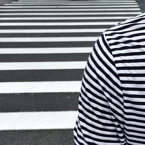 #instagram #shanghai  纹路:黑底白线还是白底黑线? 万里歧路多,一身天地窄 stripes remind u : #roadsafety  #iphoneonly #onlyiphone #iphonegraphy #上海