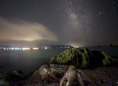 Milky Way Crab (masahiro miyasaka) Tags: sky japan night outdoors iso3200 crab galaxy  wallpapers oneshot milkyway