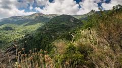 Lefkada's panorama 02 (Tom Ort) Tags: trees clouds lens landscape four zoom olympus panoramic hills greece third tomas 169 mirco omd ort lefkada karya mft 1250mm em5 f3563 eglouvi mzuiko