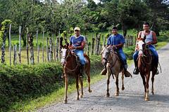 Costarican cowboys (Mala Gosia) Tags: people horse man cowboys rainforest costarica bestof photographers trail horsebackriding tresamigos