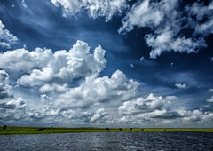 Florida Cloudscape (` Toshio ') Tags: blue sky horses green water grass clouds river landscape florida ripples cocoa cloudscape airboat toshio glades xe2 fujixe2