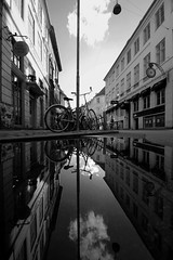 Copenhagen Reflections (In Explore). (PeskyMesky) Tags: blackandwhite rain canon reflections copenhagen blackwhite canoneos500d