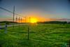 Countryside Sunset #2 (dbubis) Tags: sunset florida farm country odessa fl bubis dbphoto nex6