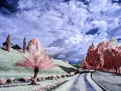 Country road (yanwym) Tags: travel indonesia ir tourist infrared laketoba volcaniclake fullspectrumcamera