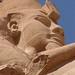 Abu Simbel_3113