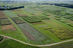 20140903_ArlingtonARS_aerials-33.jpg (UW–Madison CALS) Tags: arlington aerial aerials
