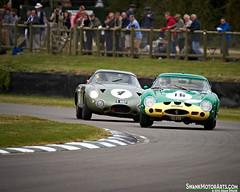 250 GTO vs. Project 214 (autoidiodyssey) Tags: england cars race vintage project sussex ferrari gto 1962 250 astonmartin chichester 1963 214 goodwoodrevival stuartgraham alaindecadenet racttcelebration juliendraper joebamford 2012goodwoodrevival sn3767gt