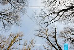 Günther Zins - Schwebende Pyramide (NRWskulptur) Tags: sculpture skulptur nrw publicart pyramide nordrheinwestfalen mönchengladbach zins kunstimöffentlichenraum northrhinewestphalia güntherzins