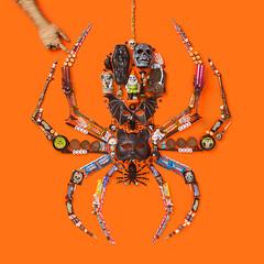 Spider (J Trav) Tags: spider thingsorganizedneatly product halloween
