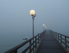 Misty Mist (Ostseeleuchte) Tags: haffkrug seebrcke pier ostsee balticsea nass kalt regnerisch regen nebel mist fog mistiy foggy benebelt trist novemberstimmung