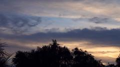 DSC05035a_Vivitar VMC 50mm f1.7 (wNG555) Tags: 2016 arizona phoenix vivitar cosina vivitarautovmc50mmf17