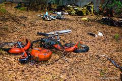 DSC_1503 (andrzej56urbanski) Tags: chernobyl czaes ukraine pripyat prypeć prypyat kyivskaoblast ua