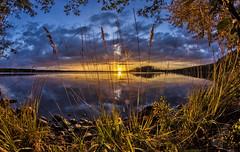 Evening rays (Kari Siren) Tags: evening lake ray sun sunset karijarvi samyang 8mm fisheye