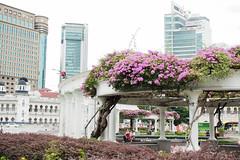 (yangkuo) Tags: kualalumpur walkabout street dataranmerdeka pair flowers plants fountain restarea cooling shade