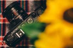 Yashica Electro 35 GTN (undead_m0nkey) Tags: camera cameraporn filmcamera rangefinder yashica electro35 tabletop flower sunflower gear analogue vintage