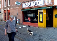 Perrito Madrid (Eddy Allart) Tags: bar cafe amsterdam hond perro hund dog chien mujer woman vrouw straat calle street