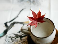 My Private Momiji Mood (sunnywinds*) Tags: kyoto arashiyama momiji momijilove moment mood moody private autumn fall foliage leaf leaves         hasselblad makroplanar 120 cfv cfv50c digitalback