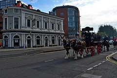 going past the Baltic Fleet (napoleon666uk) Tags: liverpool international horse festival liverpoolinternationalhorsefestival horseshow echoarena animal parade