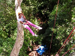 """Macucu Tree Climbing in Amazon. Manaus, Brazil. Feb 2011 #itravelanddance • <a style=""""font-size:0.8em;"""" href=""""http://www.flickr.com/photos/147943715@N05/30472647906/"""" target=""""_blank"""">View on Flickr</a>"""
