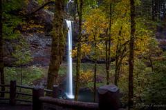 AutumSilverFalls2 (Jorge97301@gmail.com) Tags: autumn fall waterfalls oregon pnw beautiful stunning farm silver falls state parks forest creek stream water pool lake rocks dog portland silverton salem