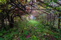Forladt drivhus (dborup) Tags: urbex forladt drivehuse abandoned sel1635z sonya7ii greenhouse drivhus